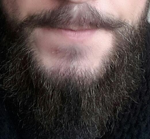 Long beard ? Short beard ?