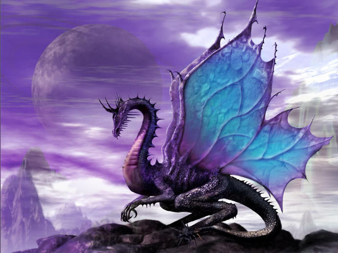 If you had a pet dragon what would you do?