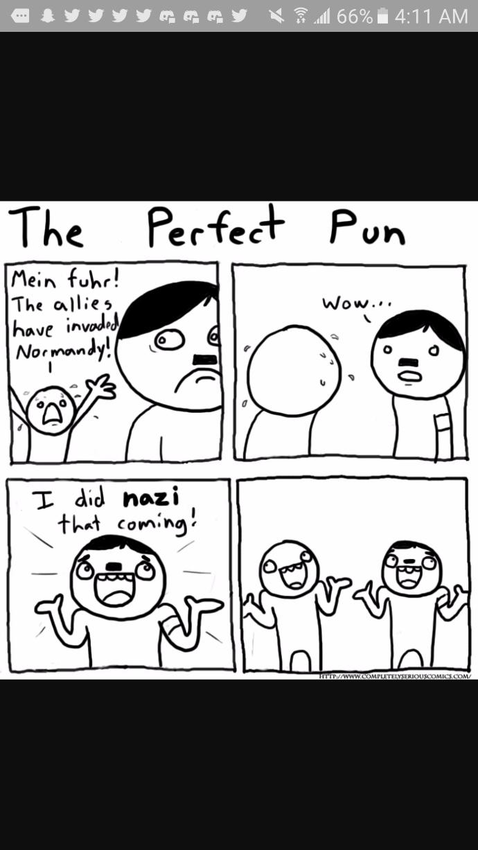 What is your opinion on puns?