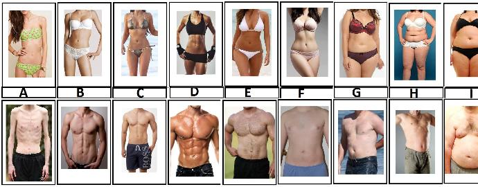 Which body type would you choose?