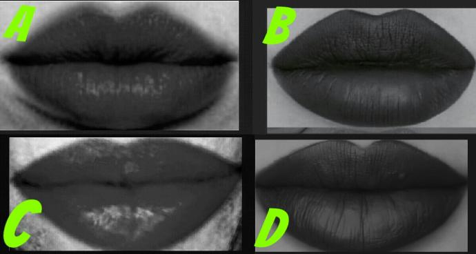 Which lip shape is beautiful?