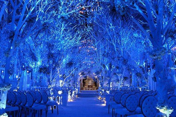 Girls, what would you do if you found out your fiance wanted to have a different themed wedding from your dream wedding?