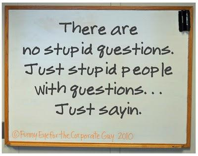 Why do people say 'there are no stupid questions', when there clearly are...?