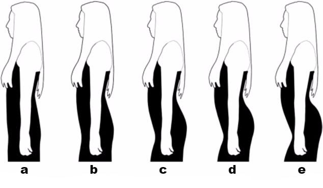 Which women's body type do you prefer?