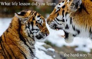 What life lesson/s did you learn the hard way ?