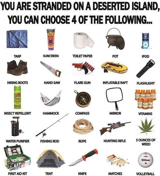 You are stranded on a deserted island, you can only choose 4 items. Which ones?