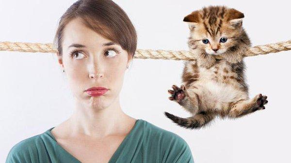 Would You Stay With Your SO Whose One Request Is That You Get Rid Of Your Pet??