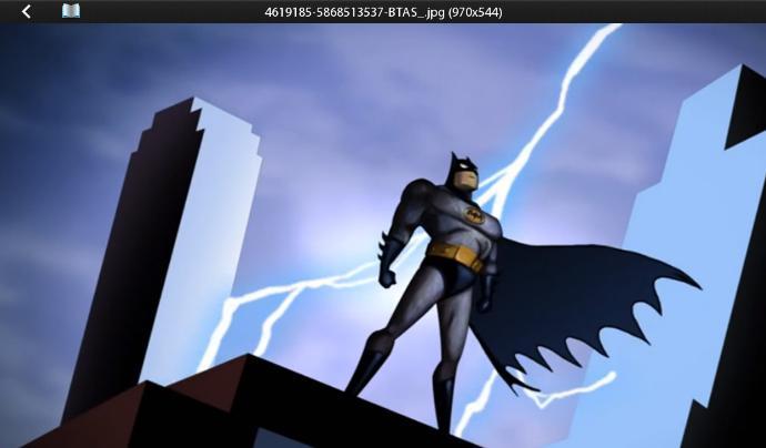 Do You Like Batman?