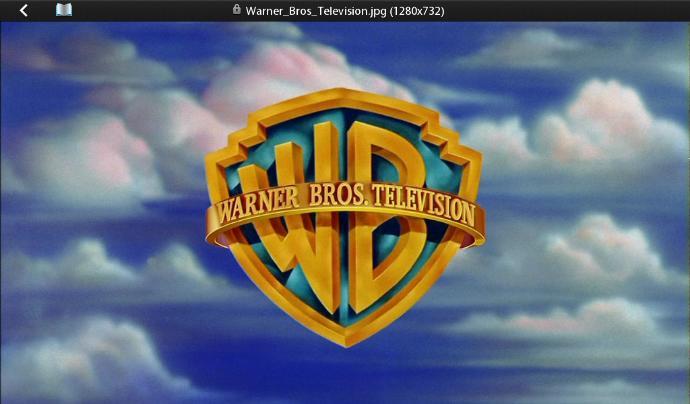 Do You Like Warner Bros Cartoons More Or Disney Cartoons More, And Please Explain?