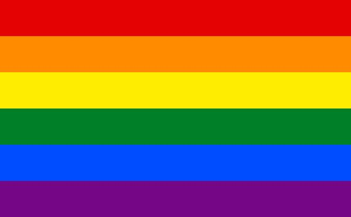 Dear LBGTQ, I have problem with the rainbow flag and I'm gay, opinions on this?
