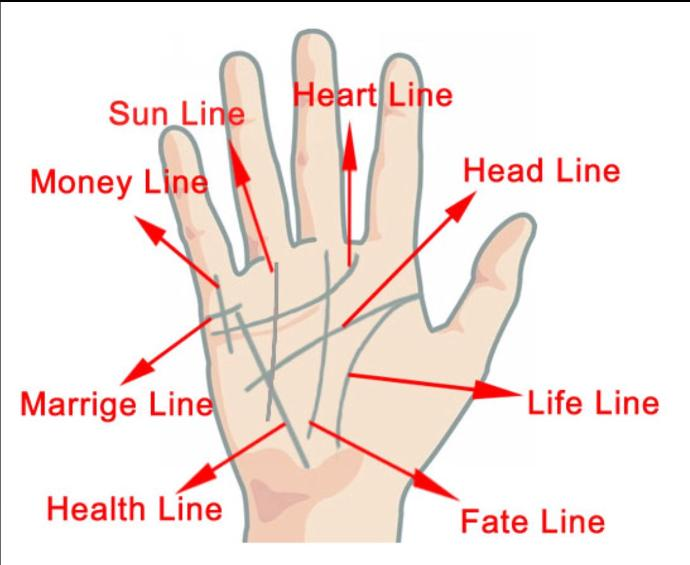 Are you ineterested in Palm reading?  Have you tried reading your Palm?<br />Maybe for fun or out of curiousity..?