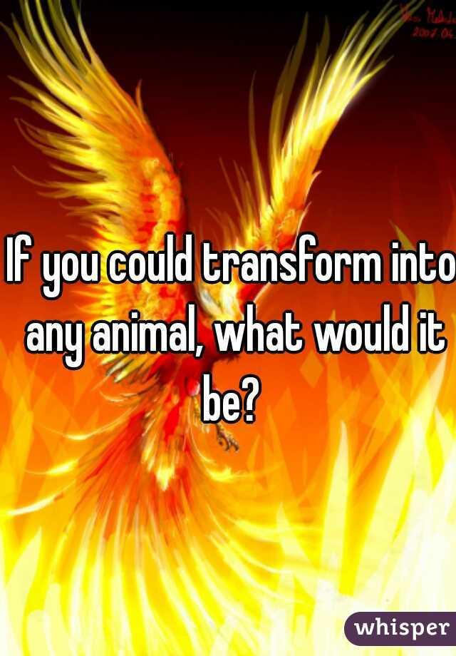 If you could transform into any animal ,what would it be?