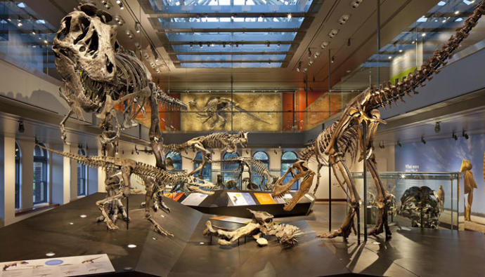 which type of museums do you prefer?