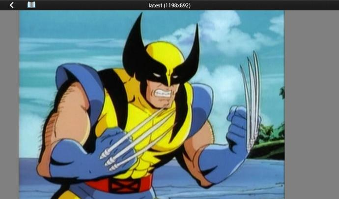 What Are Your Thoughts About Wolverine, Do You Like Him?