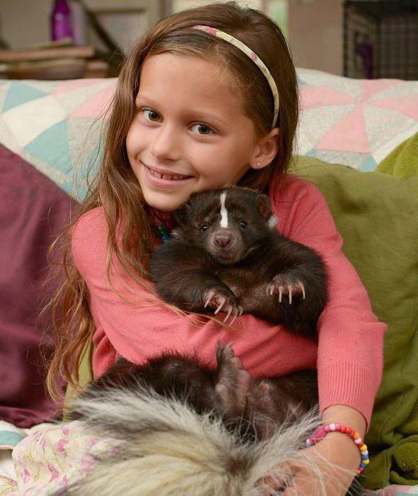 Pet skunks, yay or nay?