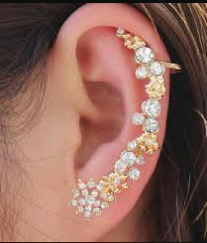 Do guys find this kind of ear piercing attractive?