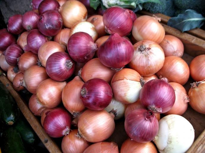 Do you like Onions?