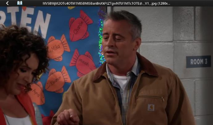 Have You Or Will You Watch Matt LeBlanc's New Show Man With A Plan?