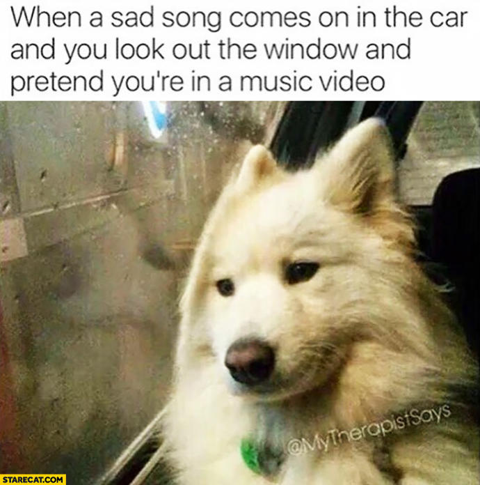 Ever felt like your life is a bad movie or music video?