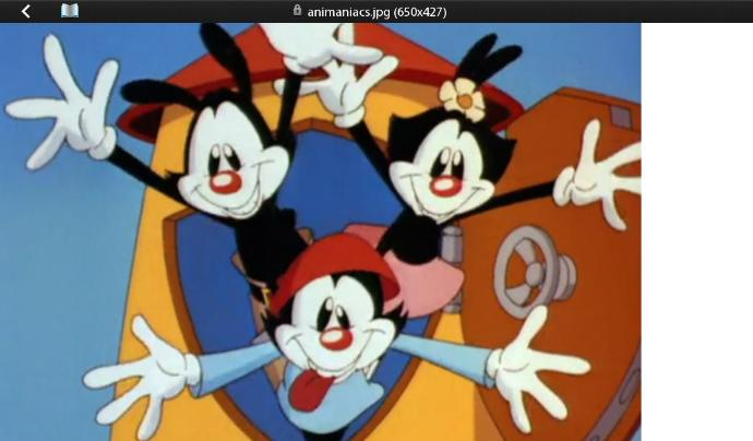 Have You Ever Got To Watch The Show Animaniacs (1993-1998) And Do You Like It?