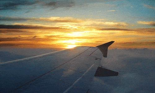 When traveling, do you want an aisle or window seat?