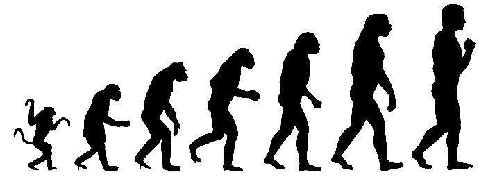 Do you believe evolution?