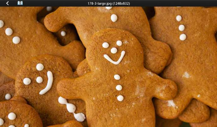 Girls, Have You Ever Had Gingerbread Cookies Do You Like Them?