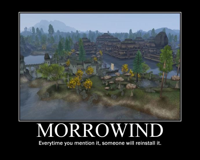 Have you played Morrowind?