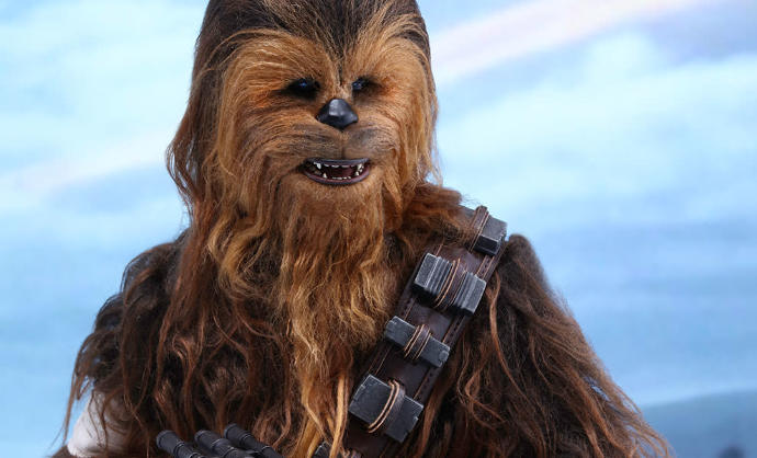 Is chewbacca the coolest character in the Star Wars universe???