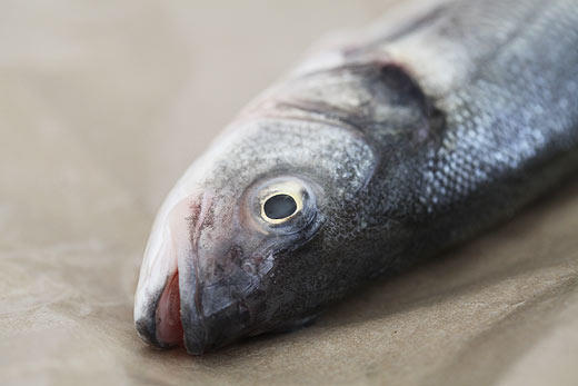 Fish eaters, can you eat fish with the heads still on them?