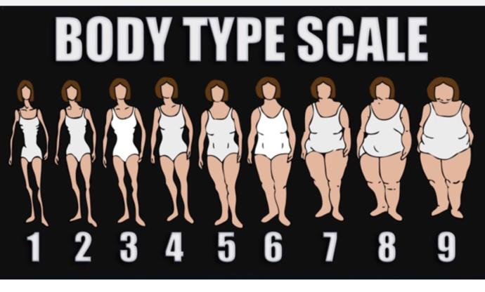 Your ideal body Type?