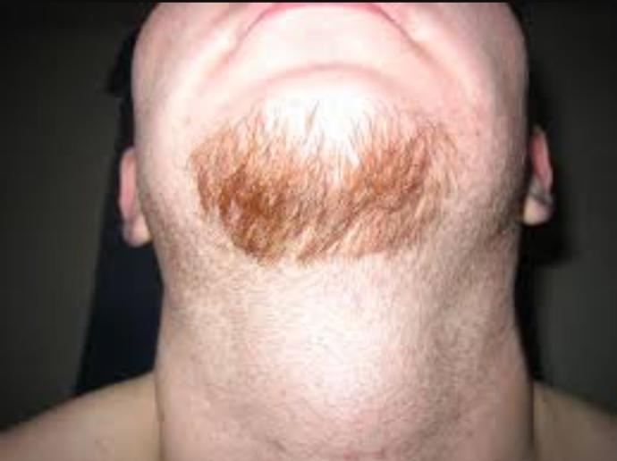 Girls, Ladies, Do you find men who rock Mustace and a Goatee attractive?