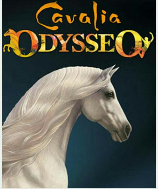 has anyone seen odysseo by cavalia??
