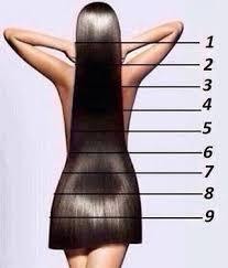Which hair length do you people prefer?