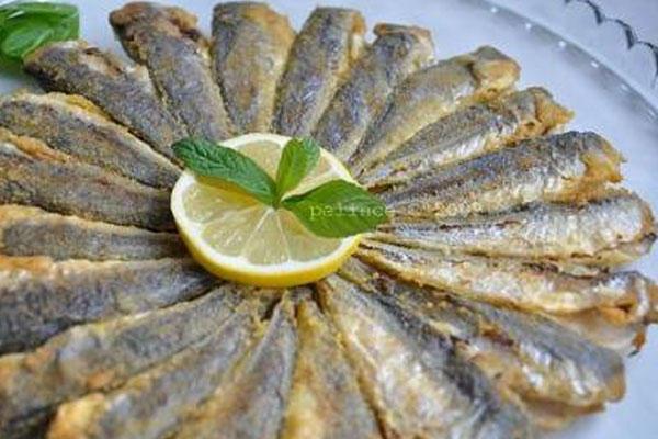 Do u like to eat fish?