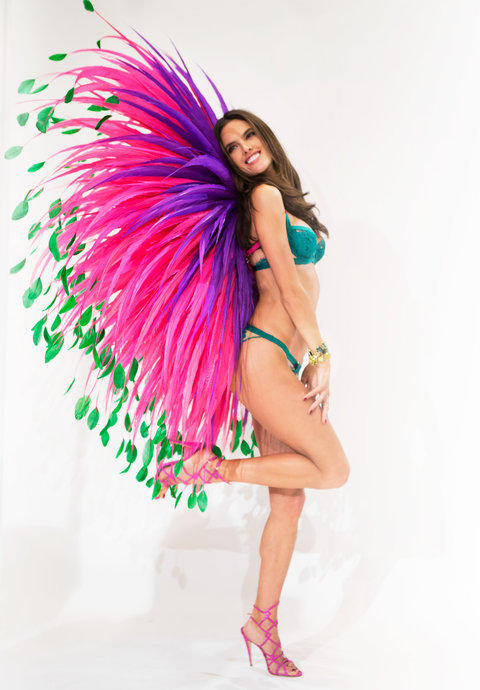 Girls! If you had the opportunity to choose 1 pair of wings from Victoria's Secret, which would they be?