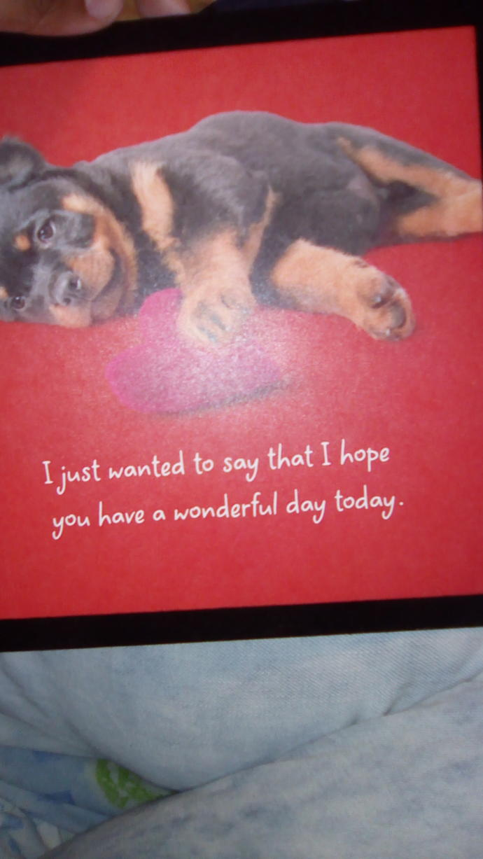 What is your opinion on this Valentine day card?
