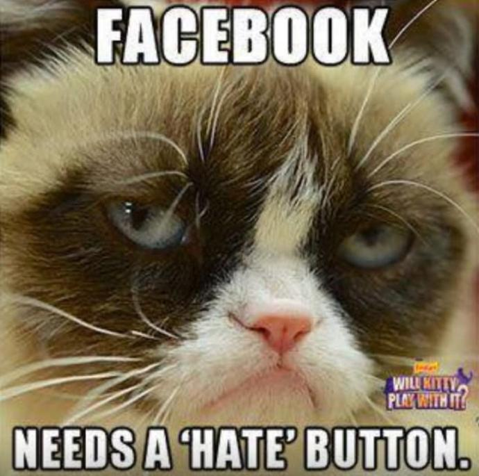 Do y'all think Facebook needs this?