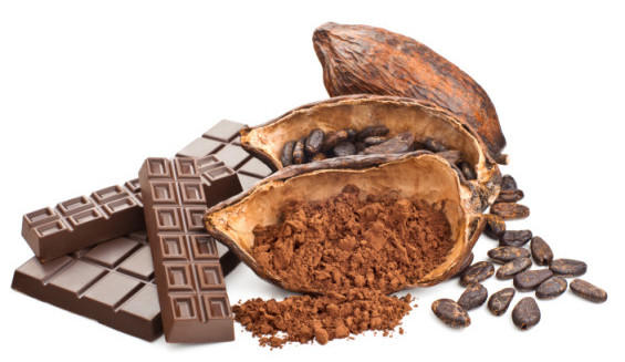 Post Valentine Poll: Are you a chocolate lover? Which chocolates do you like the best?