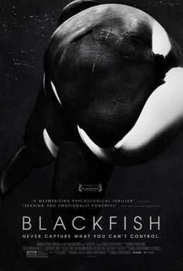 Have you seen Blackfish?