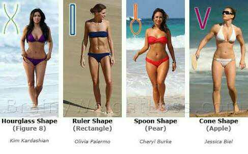question for guys.. what female body type turns u on most..?