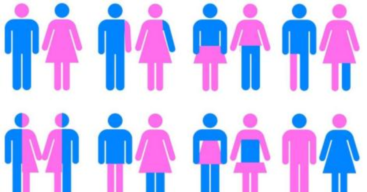 Do women learn differently than men? - LinguaLift