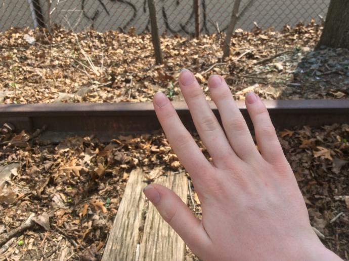 Painted or natural nails?