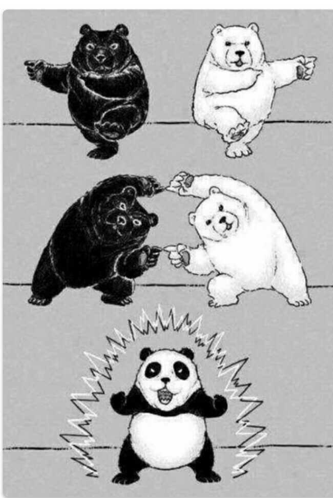 is this how pandas cam to existence??