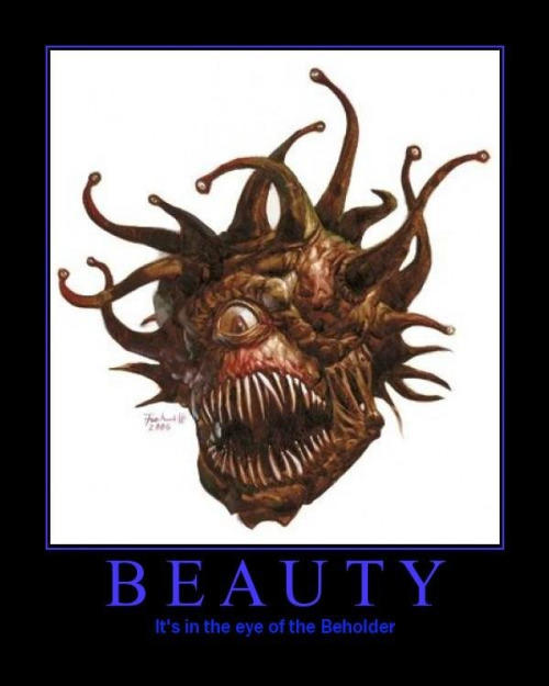 Do you agree that beauty is in the eye of the beholder?