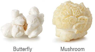 Popcorn: mushroom or butterfly?