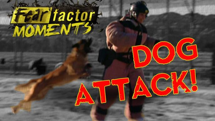 In the poll, select which Fear Factor stunt you are brave enough to do? Below, list the stunts you won't do?