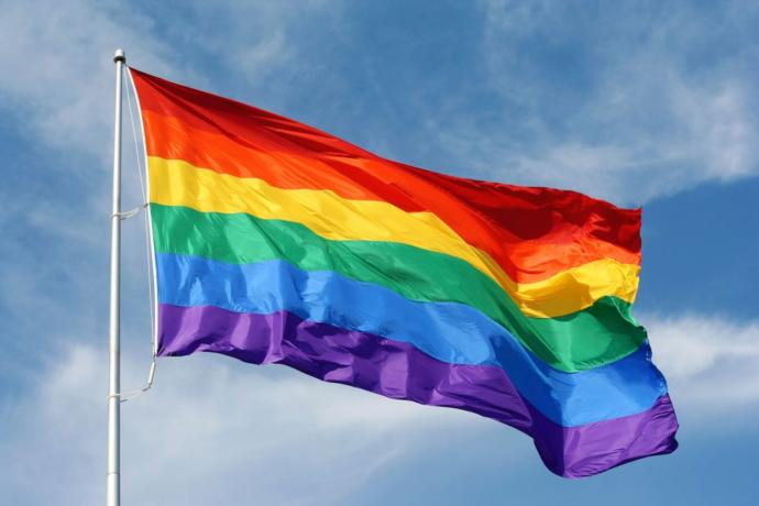 Non LGBT members will you vote a homosexual, lesbian or transgender to be president of your country especially if they are married to the same gender?