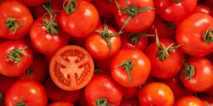 Do you like tomatoes??
