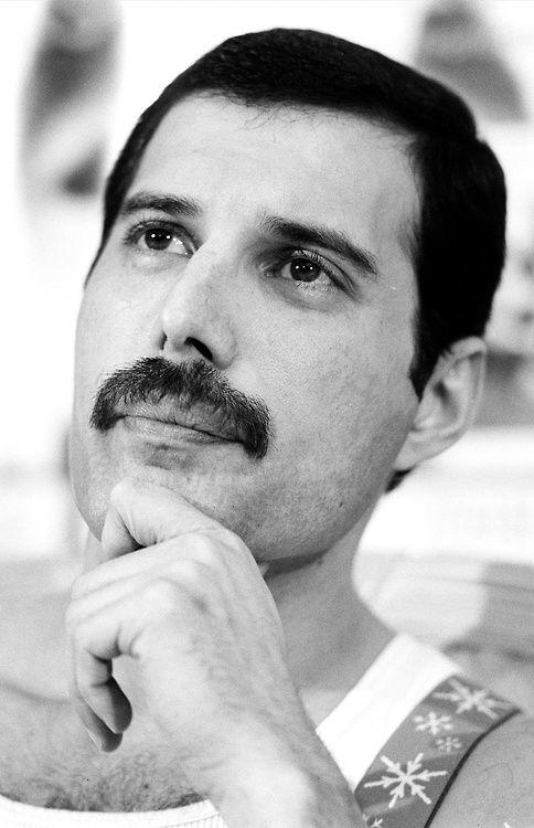 What would you rate Freddie Mercury?